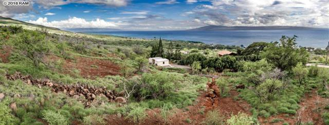 270 Ulua Rd, Kaunakakai, HI 96748 (MLS #380017) :: Elite Pacific Properties LLC