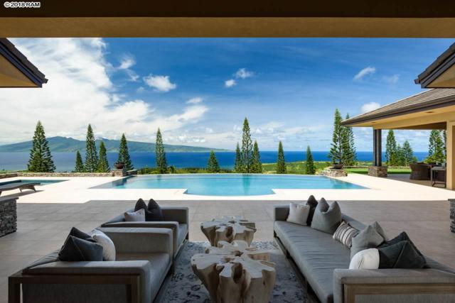 701 Mokuleia Pl #13, Lahaina, HI 96761 (MLS #380142) :: Elite Pacific Properties LLC