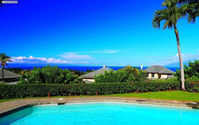406 Monarch Pl, Lahaina, HI 96763 (MLS #380152) :: Elite Pacific Properties LLC