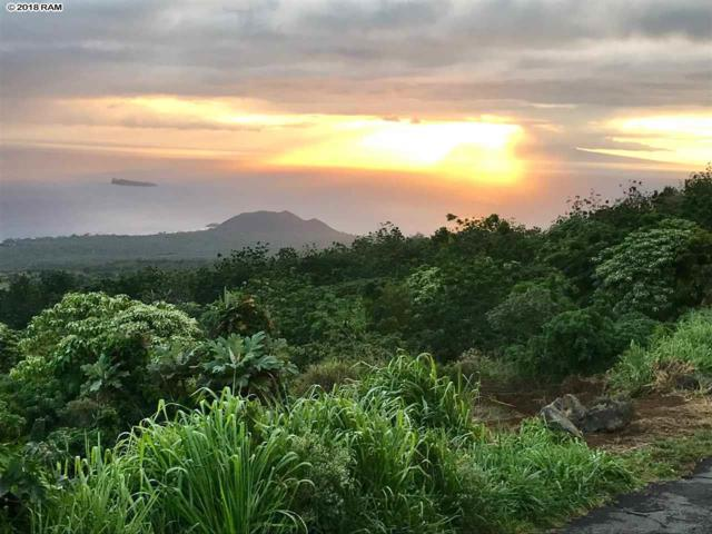 Lot 3 Kanio Kalama Park Road Rd Lot 3, Kula, HI 96790 (MLS #380285) :: Elite Pacific Properties LLC