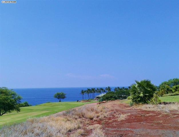 101 Lopa Pl, Lanai City, HI 96763 (MLS #380435) :: Elite Pacific Properties LLC