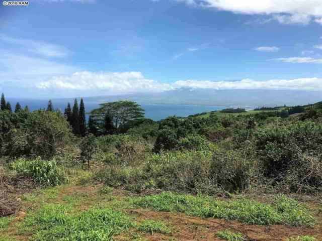27 Hulumanu Pl Mcr 35, Wailuku, HI 96793 (MLS #380532) :: Elite Pacific Properties LLC