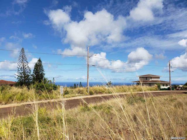 Halena St, Maunaloa, HI 96770 (MLS #380648) :: Maui Estates Group