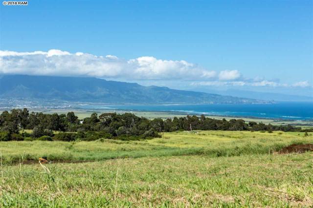 1581 Haliimaile Rd Lot 14, Makawao, HI 96768 (MLS #380733) :: Elite Pacific Properties LLC
