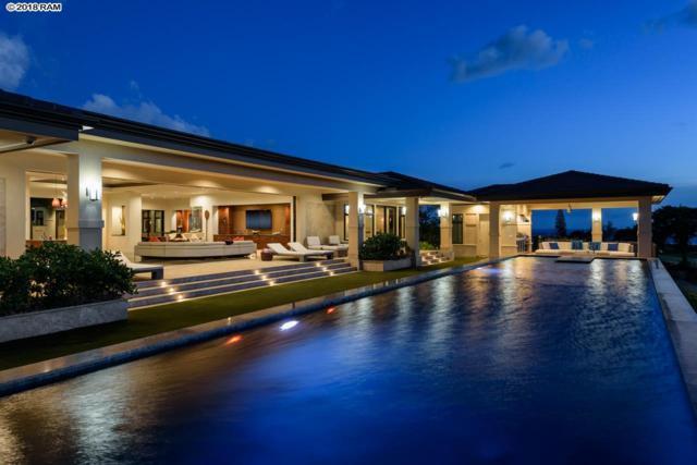 204 Anapuni Loop, Lahaina, HI 96791 (MLS #380854) :: Elite Pacific Properties LLC
