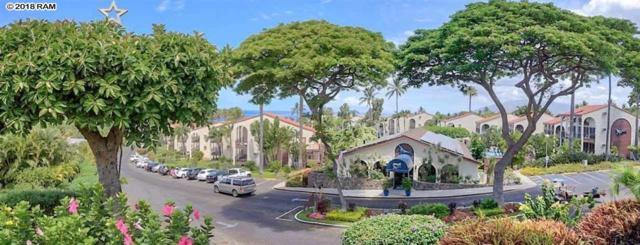 2881 S Kihei Rd #113, Kihei, HI 96753 (MLS #380864) :: Elite Pacific Properties LLC