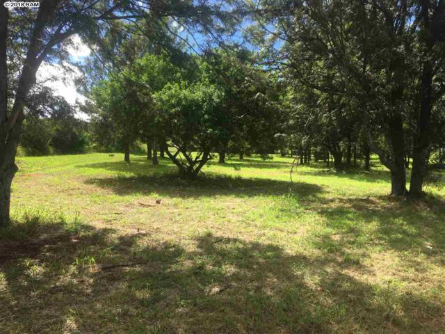 132 Makaena Pl Lot C, Pukalani, HI 96768 (MLS #380941) :: Elite Pacific Properties LLC