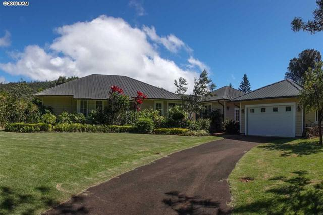 340 Kaunaoa Dr Lot 31, Lanai City, HI 96763 (MLS #380964) :: Elite Pacific Properties LLC