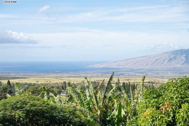 336 Aliiolani St, Makawao, HI 96768 (MLS #380976) :: Maui Estates Group