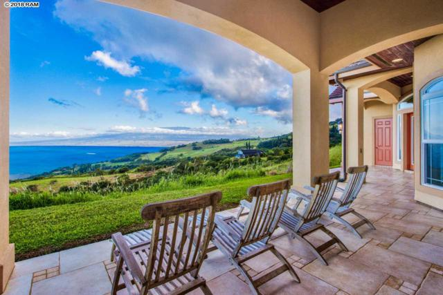 15 Lahaole Pl, Wailuku, HI 96753 (MLS #381037) :: Elite Pacific Properties LLC