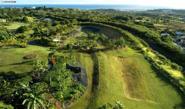 2011 Puuohala Rd, Wailuku, HI 96793 (MLS #381091) :: Elite Pacific Properties LLC