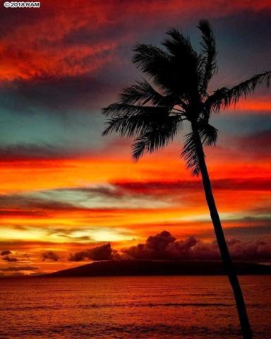 4327 Lower Honoapiilani Rd #401, Lahaina, HI 96761 (MLS #381110) :: Maui Estates Group