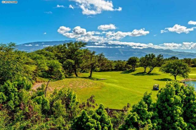 49 Kamaiki Cir #103, Kahului, HI 96793 (MLS #381134) :: Maui Estates Group