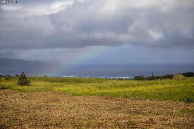 2450 Baldwin Ave Lot 8, Makawao, HI 96768 (MLS #381135) :: Maui Estates Group