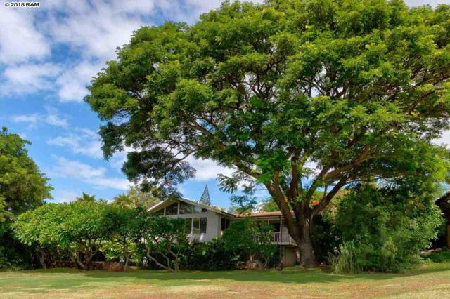134 Halelo St, Lahaina, HI 96761 (MLS #381148) :: Elite Pacific Properties LLC