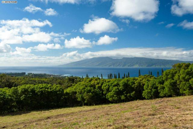 138 Keoawa St, Lahaina, HI 96761 (MLS #381152) :: Maui Estates Group