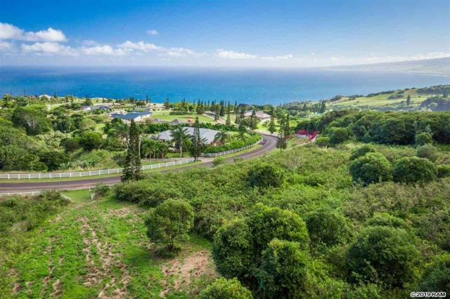 63 Lahaole Pl, Wailuku, HI 96793 (MLS #381218) :: Elite Pacific Properties LLC