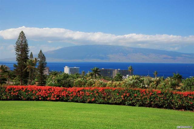 50 Puu Anoano St #2901, Lahaina, HI 96761 (MLS #381254) :: Maui Estates Group