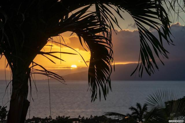 80 Haniu St, Lahaina, HI 96761 (MLS #381434) :: Maui Estates Group