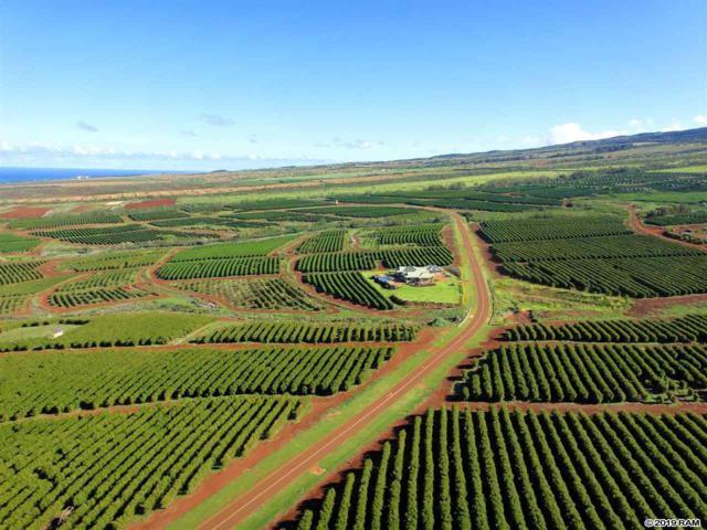 1600 Aina Mahi'ai St #42, Lahaina, HI 96761 (MLS #381435) :: Maui Estates Group