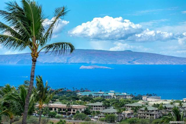 3523 Malina Pl, Kihei, HI 96753 (MLS #381483) :: Elite Pacific Properties LLC