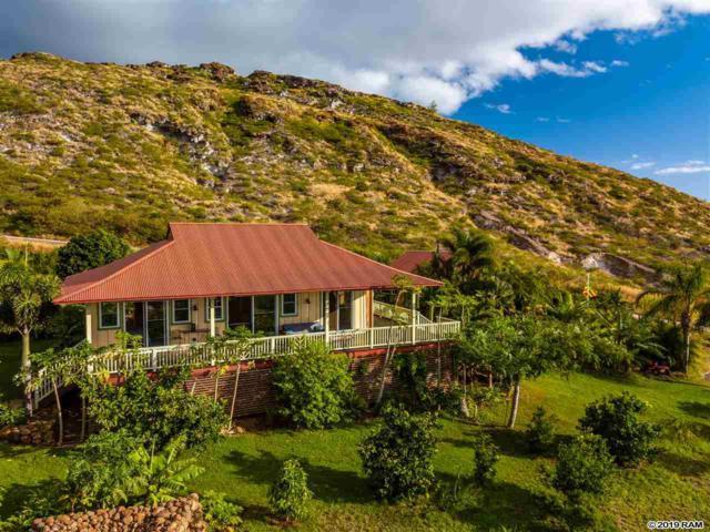 225 Wailau Pl, Lahaina, HI 96761 (MLS #381604) :: Maui Estates Group
