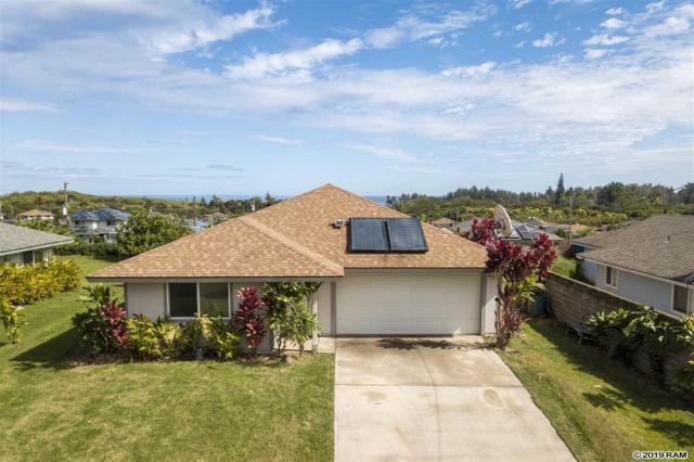 53 Opihi Pl, Wailuku, HI 96793 (MLS #381687) :: Elite Pacific Properties LLC
