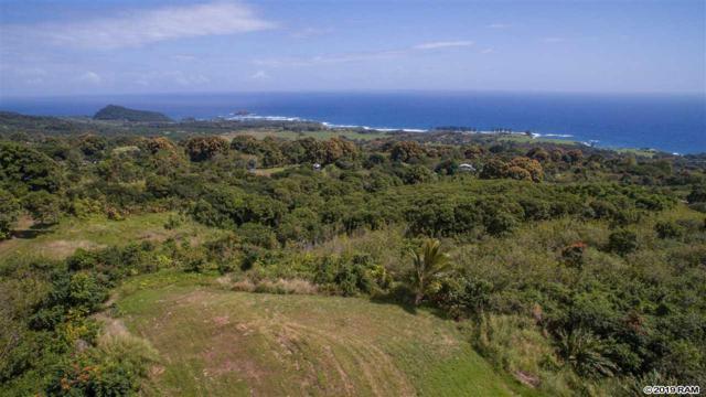 110 Waiho'i Rd, Hana, HI 96713 (MLS #381701) :: Maui Estates Group