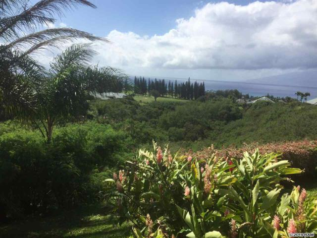 624 Silversword Dr Lot 28, Lahaina, HI 96761 (MLS #381724) :: Coldwell Banker Island Properties