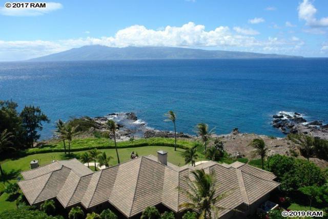 6291 Honoapiilani Hwy, Lahaina, HI 96761 (MLS #381791) :: Elite Pacific Properties LLC