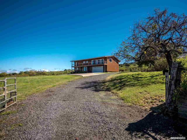 600 Calasa Rd, Kula, HI 96790 (MLS #381873) :: Elite Pacific Properties LLC