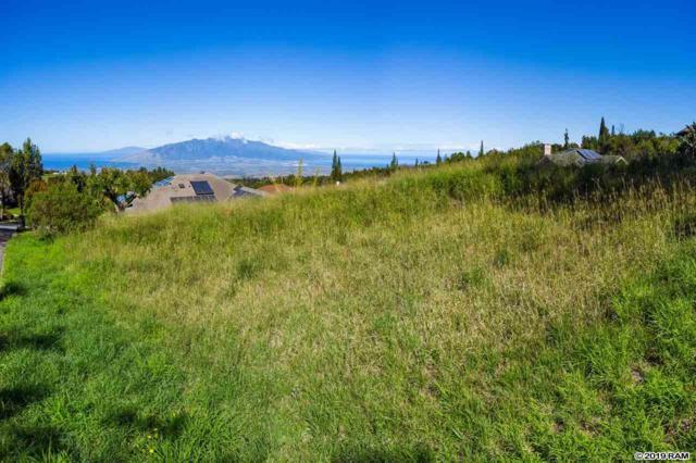 47 Kulamanu Cir, Kula, HI 96790 (MLS #381998) :: Maui Estates Group