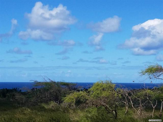 139 Ahiu Rd Lot 139, Maunaloa, HI 96770 (MLS #382010) :: Maui Estates Group