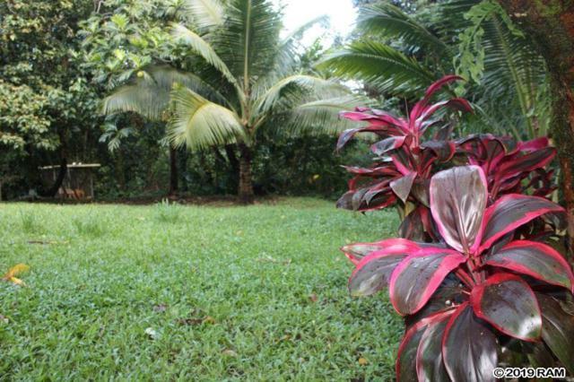 8093 Hana Hwy Hwy, Haiku, HI 96708 (MLS #382047) :: Keller Williams Realty Maui
