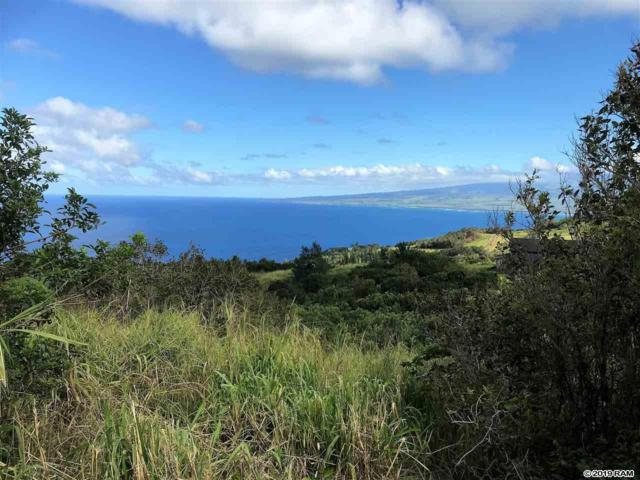21 Lahaole Pl Mcr 11, Wailuku, HI 96793 (MLS #382066) :: Elite Pacific Properties LLC