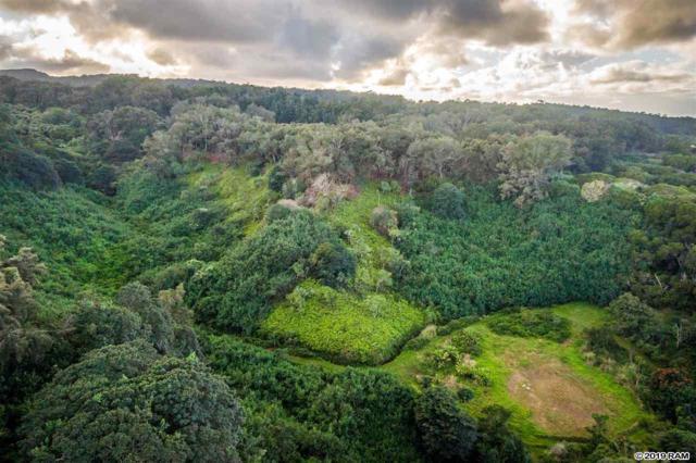 0 Hana Hwy, Haiku, HI 96708 (MLS #382125) :: Keller Williams Realty Maui