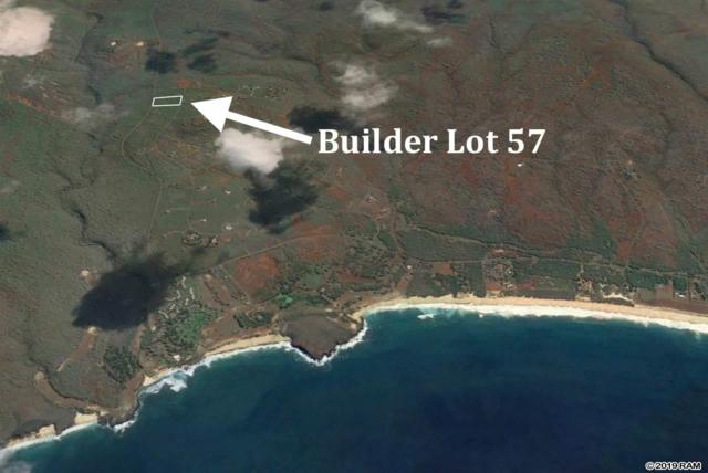 0 Kaula Rd Builder Lot 57, Maunaloa, HI 96770 (MLS #382128) :: LUVA Real Estate