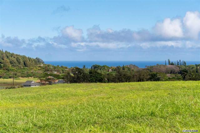 200 Hekuawa St B, Haiku, HI 96708 (MLS #382279) :: Coldwell Banker Island Properties