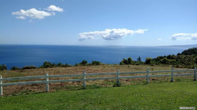 3650 Kahekili Hwy Lot 1-A-1, Wailuku, HI 96793 (MLS #382401) :: Elite Pacific Properties LLC