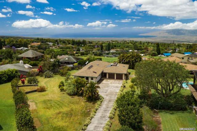 28 Lanipaa Way, Kula, HI 96790 (MLS #382551) :: Maui Estates Group
