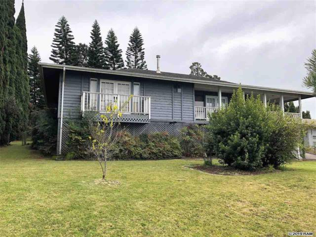 23 Meakoho Pl, Kula, HI 96790 (MLS #382553) :: Coldwell Banker Island Properties