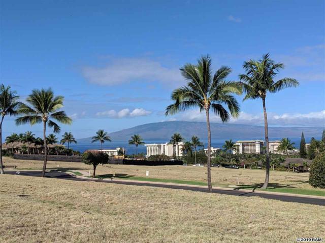 45 Lolii Pl Lot 37 Phase 1, Lahaina, HI 96761 (MLS #382579) :: Elite Pacific Properties LLC