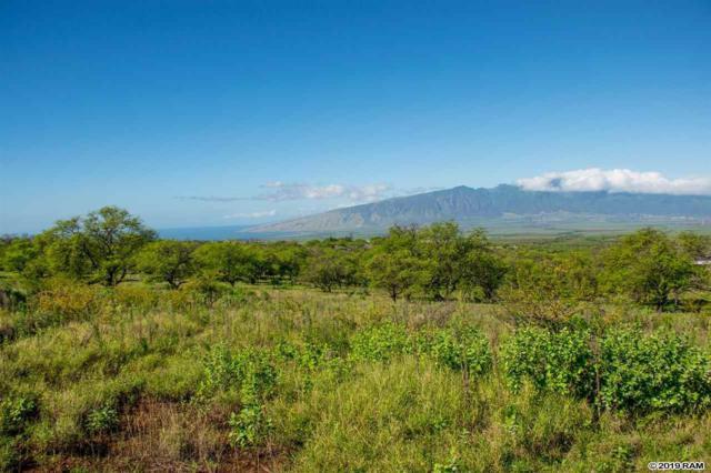 147 Ikena Kai Pl Lot B, Kula, HI 96790 (MLS #382697) :: Maui Estates Group