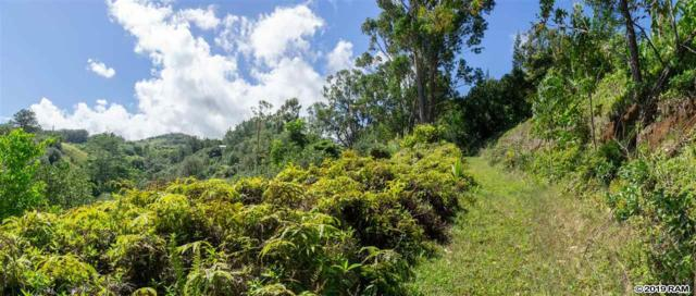 471 A Ulumalu Rd A, Haiku, HI 96708 (MLS #382719) :: Maui Estates Group