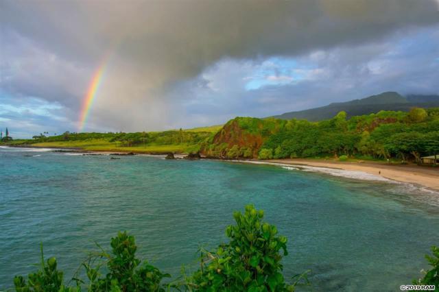 0 Hana Hwy, Hana, HI 96713 (MLS #382748) :: Maui Estates Group