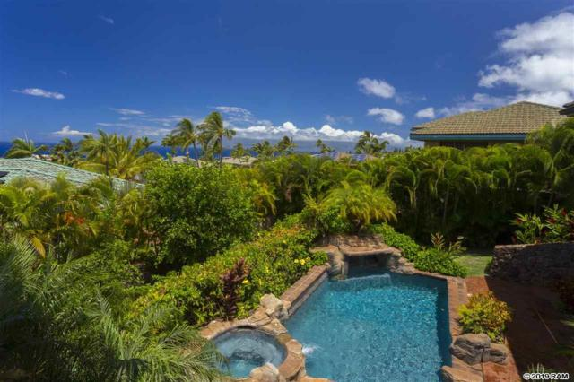 324 Aalii Way, Lahaina, HI 96761 (MLS #382803) :: Elite Pacific Properties LLC
