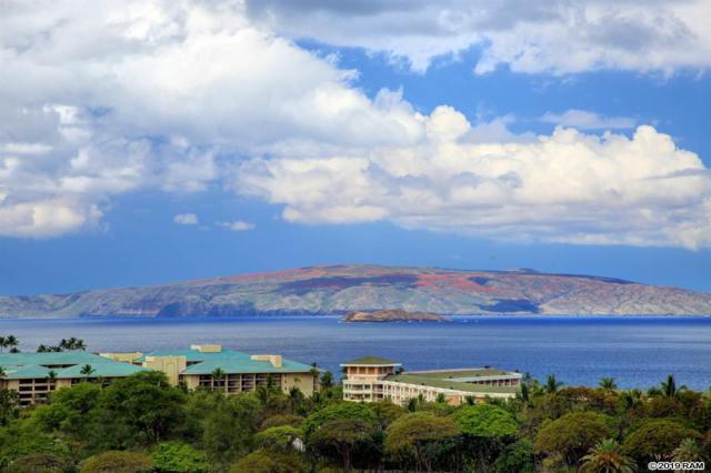 10 Wailea Ekolu Pl #104, Kihei, HI 96753 (MLS #382966) :: Maui Estates Group