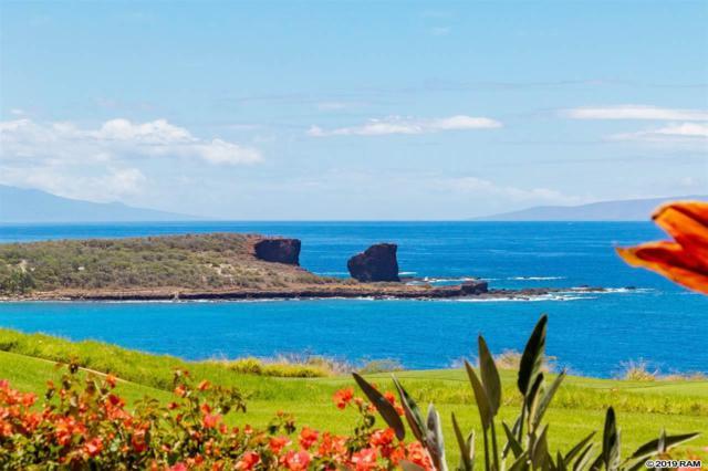 30 B Uhaloa Pl 2B, Lanai City, HI 96763 (MLS #383087) :: Maui Estates Group