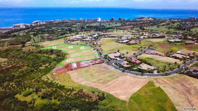 444 Anapuni Loop Lot 45 Ph 2, Lahaina, HI 96761 (MLS #383179) :: Maui Estates Group
