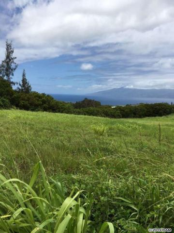 126 Keoawa St #19, Lahaina, HI 96761 (MLS #383196) :: Elite Pacific Properties LLC
